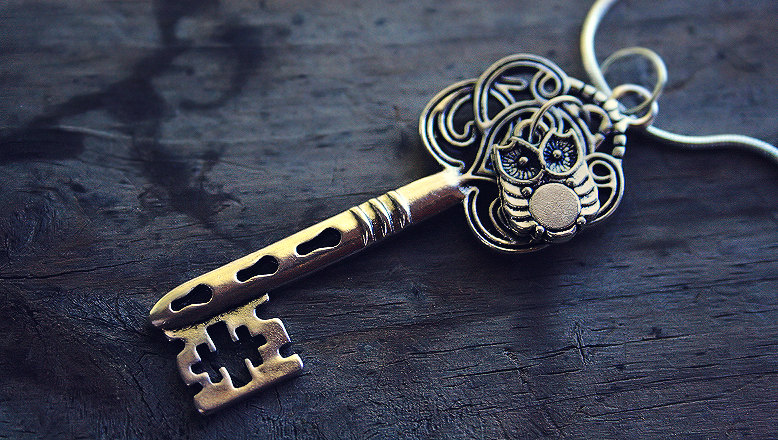tiny_silver_owl_and_key_charm_necklace_by_acciolucius-d5fw1ic
